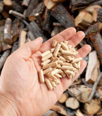 Wood pellets in hand on firewood background